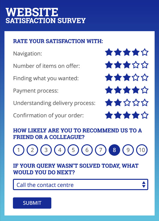 Website Satisfaction Survey example